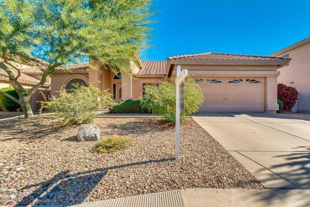 3413 N Platina, Mesa, AZ 85215 (MLS #5844947) :: CC & Co. Real Estate Team