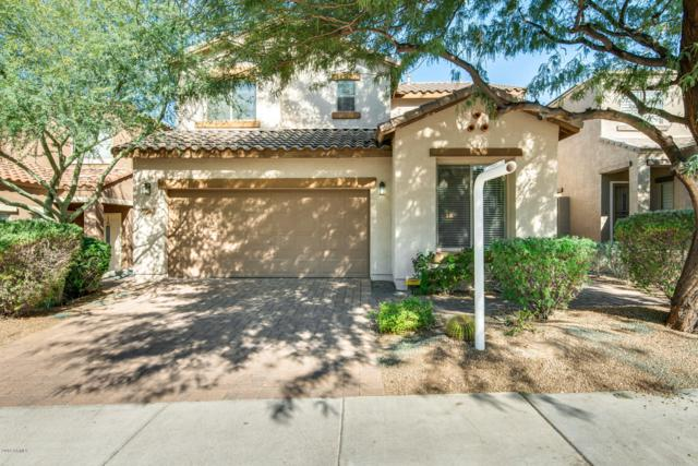 2342 W Tallgrass Trail, Phoenix, AZ 85085 (MLS #5845251) :: Lifestyle Partners Team