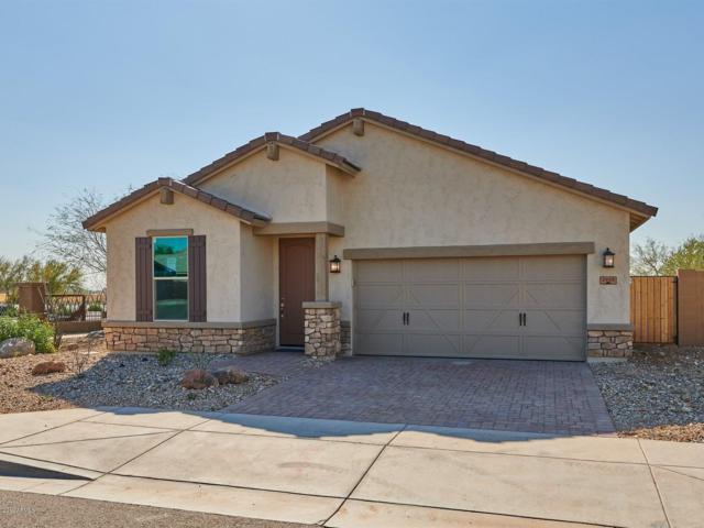 2905 W Laredo Lane, Phoenix, AZ 85085 (MLS #5845319) :: CC & Co. Real Estate Team