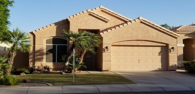 787 N Gregory Place, Chandler, AZ 85226 (MLS #5845375) :: Group 46:10