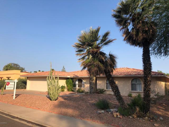 2416 E Ivyglen Street, Mesa, AZ 85213 (MLS #5845614) :: Yost Realty Group at RE/MAX Casa Grande
