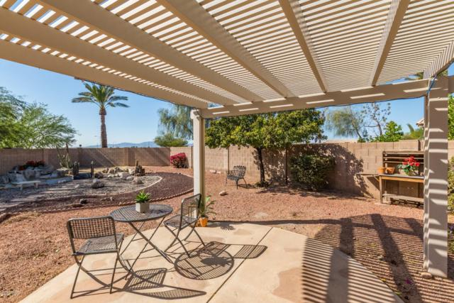 10659 W Yukon Drive, Peoria, AZ 85382 (MLS #5845734) :: Kelly Cook Real Estate Group