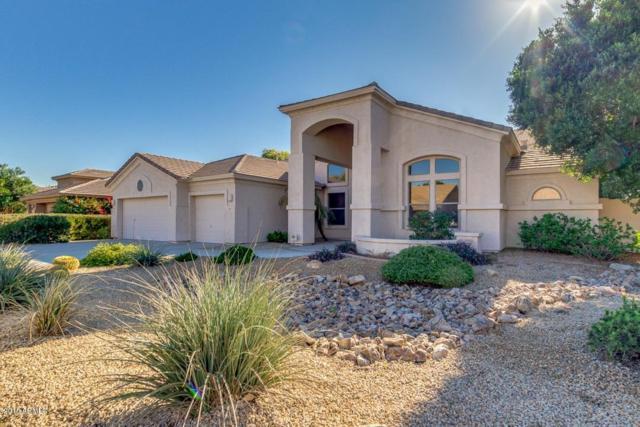 1207 W Armstrong Way, Chandler, AZ 85286 (MLS #5846005) :: Arizona 1 Real Estate Team