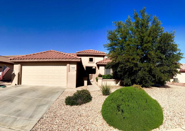 16424 W Sandia Park Drive, Surprise, AZ 85374 (MLS #5846083) :: The Jesse Herfel Real Estate Group