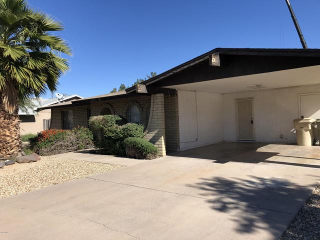 11219 N 49th Drive, Glendale, AZ 85304 (MLS #5846095) :: Yost Realty Group at RE/MAX Casa Grande