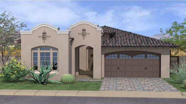 18547 E Arrowhead Trail, Queen Creek, AZ 85142 (MLS #5846338) :: Lux Home Group at  Keller Williams Realty Phoenix