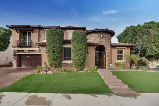 18338 W Palo Verde Avenue, Waddell, AZ 85355 (MLS #5846342) :: RE/MAX Excalibur