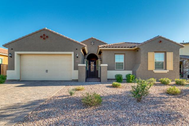 2637 E Stacey Road, Gilbert, AZ 85298 (MLS #5846354) :: The Jesse Herfel Real Estate Group
