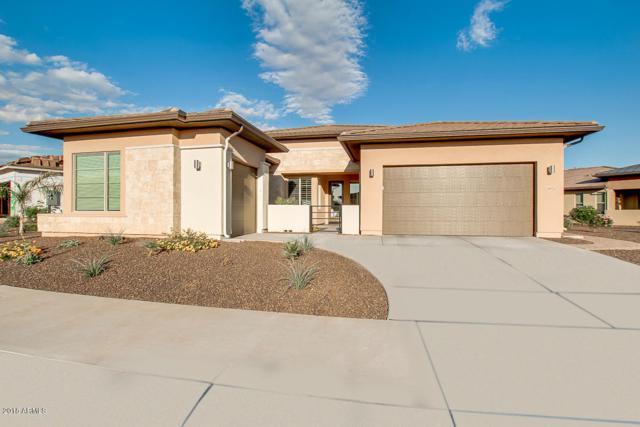 29929 N 133RD Lane, Peoria, AZ 85383 (MLS #5846422) :: Lux Home Group at  Keller Williams Realty Phoenix