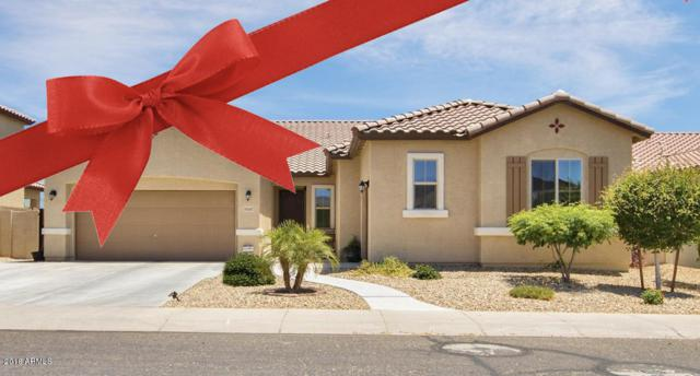 10507 N 186TH Avenue, Waddell, AZ 85355 (MLS #5846535) :: RE/MAX Excalibur
