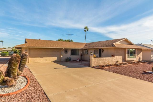 10420 W Desert Rock Drive, Sun City, AZ 85351 (MLS #5846906) :: CC & Co. Real Estate Team