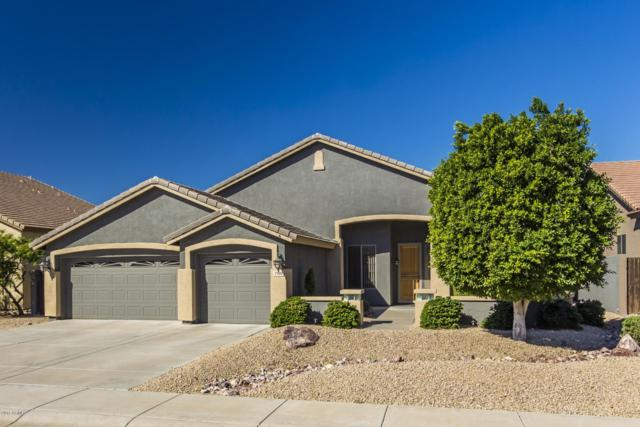 7146 W Briles Road, Peoria, AZ 85383 (MLS #5846950) :: Brett Tanner Home Selling Team