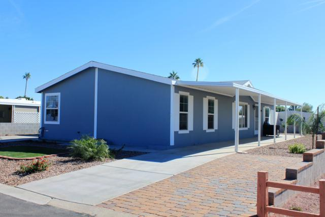 8161 E Cactus Drive, Mesa, AZ 85208 (MLS #5846974) :: The Daniel Montez Real Estate Group