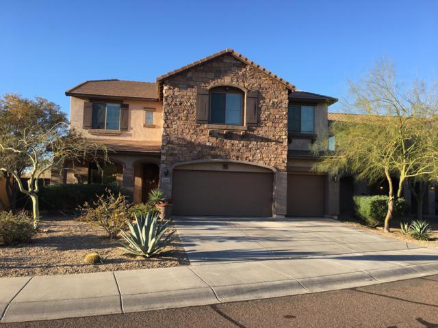 28002 N Sierra Sky Drive, Peoria, AZ 85383 (MLS #5847048) :: The Laughton Team