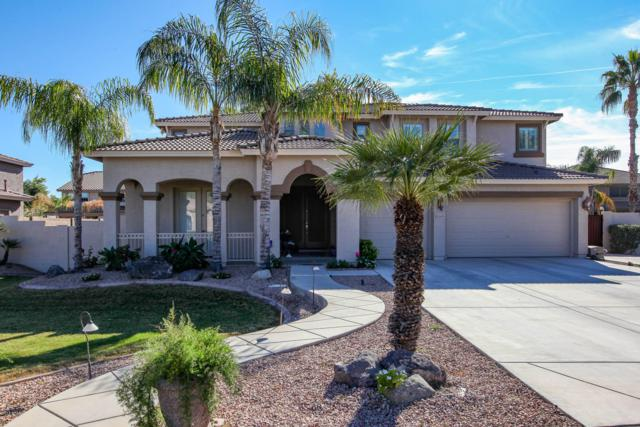 2629 E Cedar Place, Chandler, AZ 85249 (MLS #5847072) :: Devor Real Estate Associates