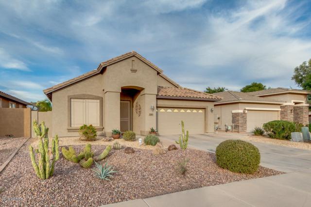 230 E Rock Wren Drive, San Tan Valley, AZ 85143 (MLS #5847358) :: Yost Realty Group at RE/MAX Casa Grande