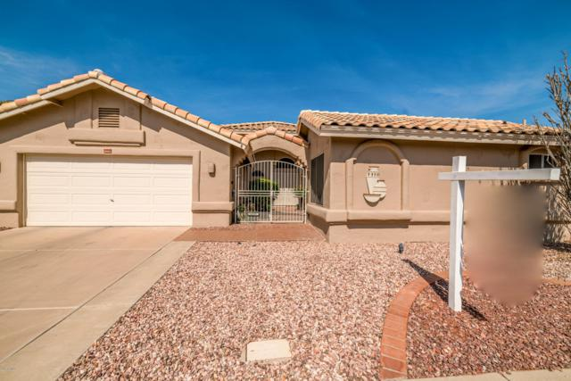 14208 W Morning Star Trail, Surprise, AZ 85374 (MLS #5847402) :: Yost Realty Group at RE/MAX Casa Grande