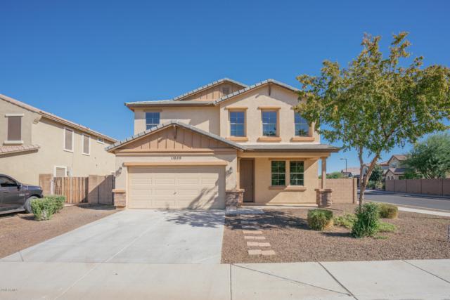 11859 N 156TH Lane, Surprise, AZ 85379 (MLS #5847552) :: Keller Williams Realty Phoenix