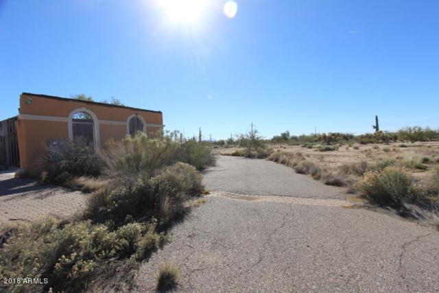 9787 N Sidewinder Circle, Florence, AZ 85132 (MLS #5847616) :: Yost Realty Group at RE/MAX Casa Grande
