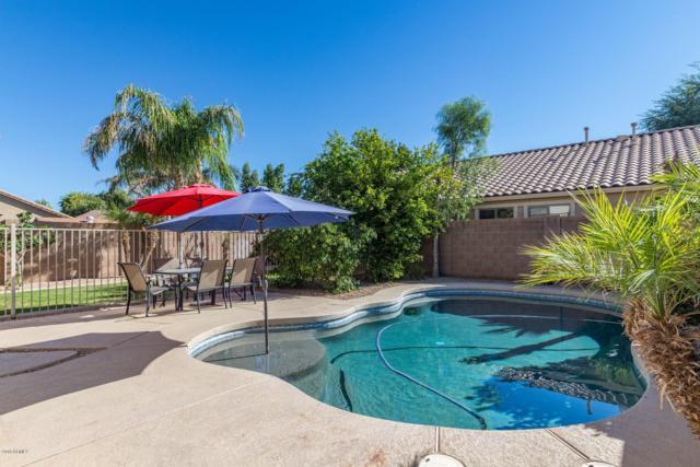 23483 S 223RD Court, Queen Creek, AZ 85142 (MLS #5847661) :: The W Group