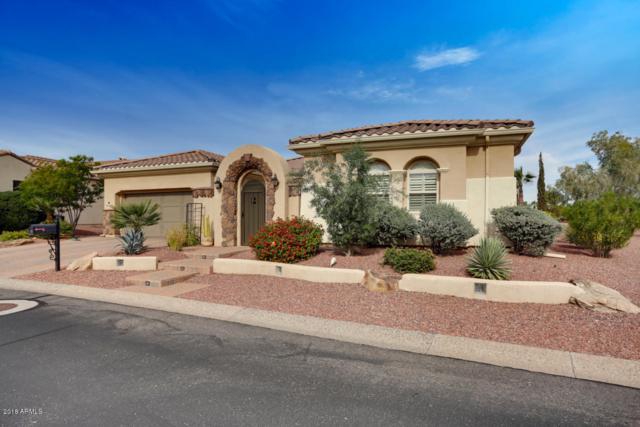 13244 W Micheltorena Drive, Sun City West, AZ 85375 (MLS #5847687) :: Desert Home Premier