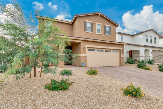 16631 W Yucatan Drive, Surprise, AZ 85388 (MLS #5847752) :: Arizona 1 Real Estate Team