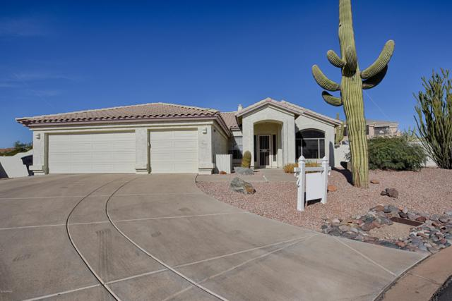 23032 N 91ST Place, Scottsdale, AZ 85255 (MLS #5847800) :: Conway Real Estate