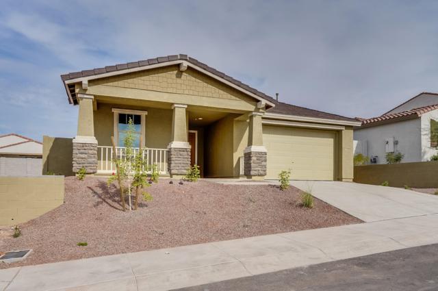 10648 W Eucalyptus Road, Peoria, AZ 85383 (MLS #5847828) :: The Results Group