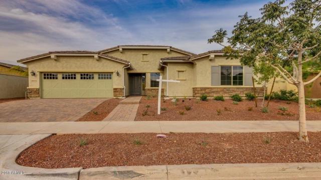 20534 W Alsap Road, Buckeye, AZ 85396 (MLS #5848047) :: The Results Group