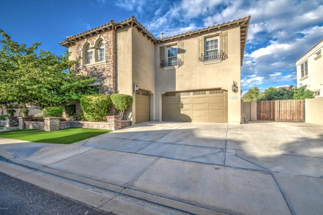 2088 E Hackberry Place, Chandler, AZ 85286 (MLS #5848144) :: Team Wilson Real Estate