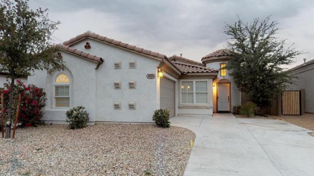 30266 W Earll Drive, Buckeye, AZ 85396 (MLS #5848432) :: Scott Gaertner Group