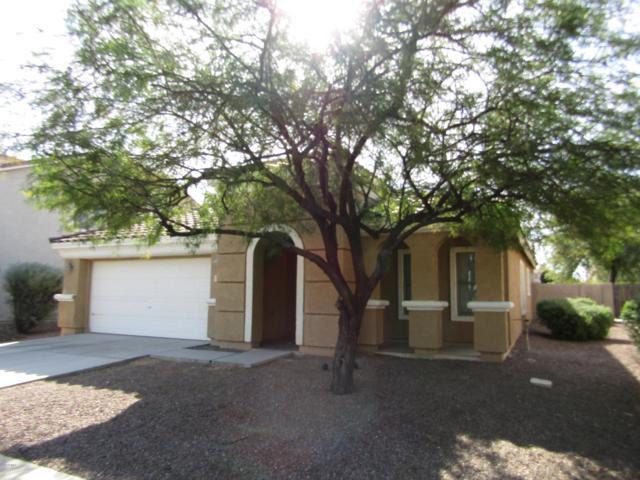 16427 W Paso Trail, Surprise, AZ 85387 (MLS #5848442) :: Yost Realty Group at RE/MAX Casa Grande