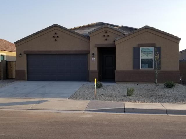 41975 W Lago Street, Maricopa, AZ 85138 (MLS #5848444) :: Kepple Real Estate Group