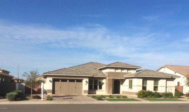 3350 E Azalea Drive, Chandler, AZ 85286 (MLS #5848477) :: The Daniel Montez Real Estate Group