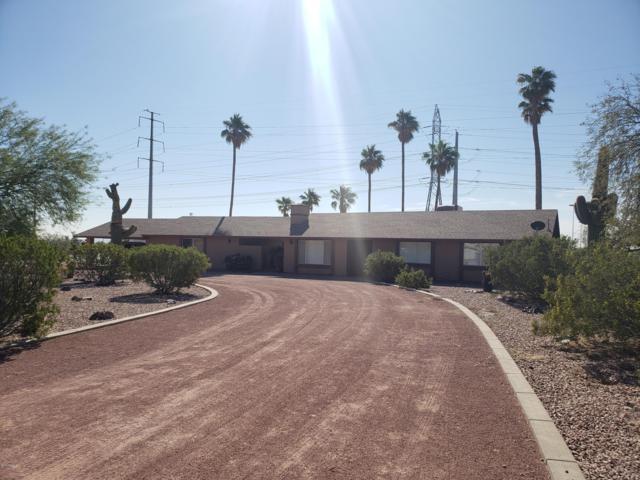 22801 W Watkins Street, Buckeye, AZ 85326 (MLS #5848741) :: The Results Group