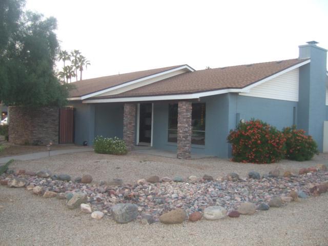 7654 W Michigan Avenue, Glendale, AZ 85308 (MLS #5848763) :: Yost Realty Group at RE/MAX Casa Grande