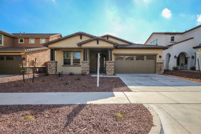 20459 W Park Meadows Drive, Buckeye, AZ 85396 (MLS #5848804) :: The Results Group