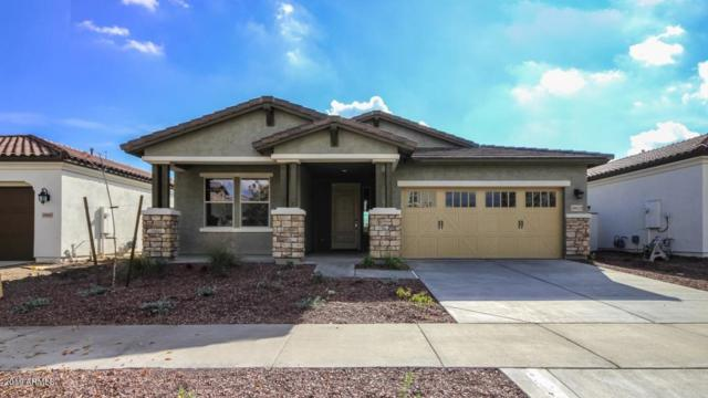 20653 W Alsap Road, Buckeye, AZ 85396 (MLS #5848812) :: The Results Group