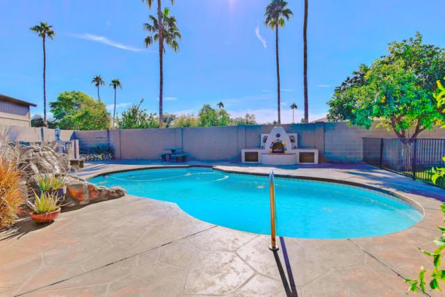 3400 N Cortez Court, Chandler, AZ 85224 (MLS #5848994) :: Keller Williams Realty Phoenix