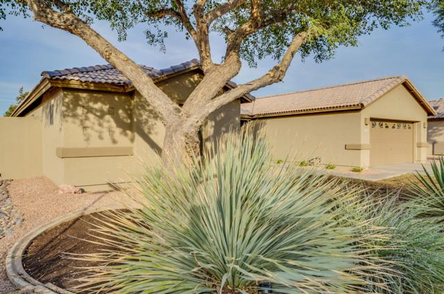 5340 W Morten Avenue, Glendale, AZ 85301 (MLS #5849222) :: Scott Gaertner Group
