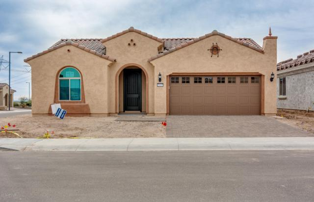 20410 N 275TH Drive, Buckeye, AZ 85396 (MLS #5849365) :: CC & Co. Real Estate Team