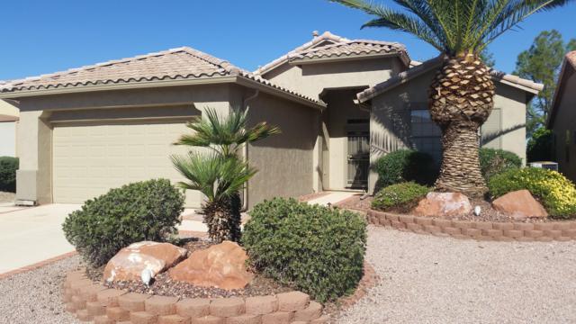 18044 W Fairway Drive, Surprise, AZ 85374 (MLS #5849592) :: The Pete Dijkstra Team