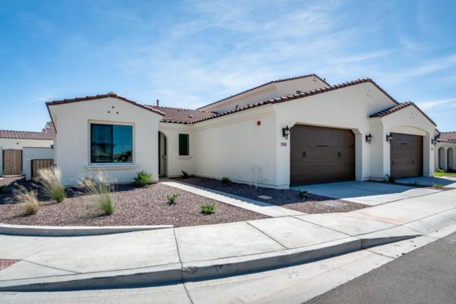 14200 W Village Parkway #2155, Litchfield Park, AZ 85340 (MLS #5850120) :: The Results Group