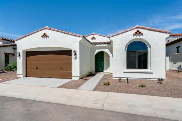 14200 W Village Parkway #2046, Litchfield Park, AZ 85340 (MLS #5850133) :: Yost Realty Group at RE/MAX Casa Grande