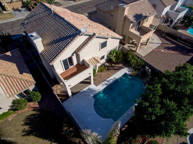 3823 E Briarwood Terrace, Phoenix, AZ 85048 (MLS #5850283) :: The Property Partners at eXp Realty