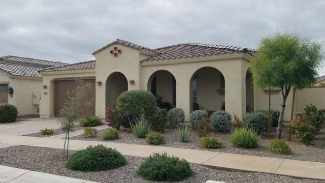 4710 S Centric Way, Mesa, AZ 85212 (MLS #5850347) :: RE/MAX Excalibur