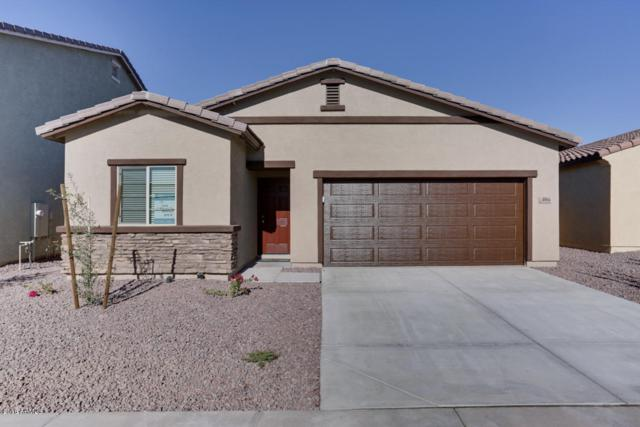 4064 W Ardmore Road, Laveen, AZ 85339 (MLS #5850411) :: Team Wilson Real Estate