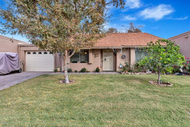 26 Leisure World, Mesa, AZ 85206 (MLS #5850626) :: Yost Realty Group at RE/MAX Casa Grande