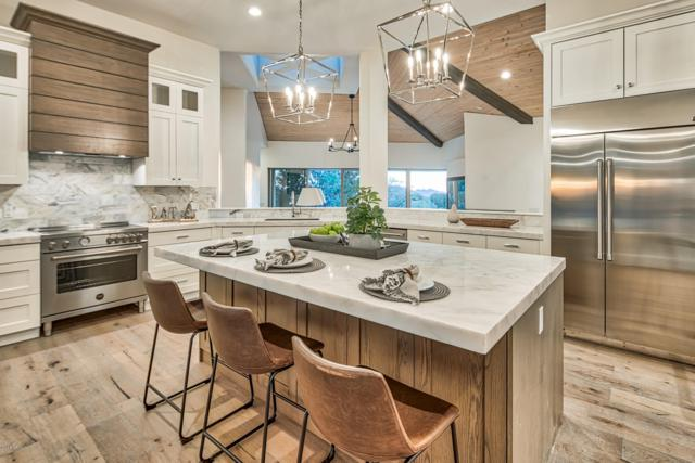 10776 E Tamarisk Way, Scottsdale, AZ 85262 (MLS #5850657) :: Team Wilson Real Estate