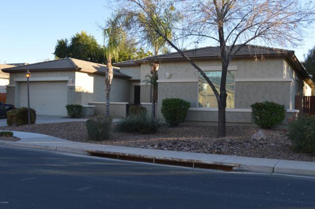 2149 E Lynx Place, Chandler, AZ 85249 (MLS #5850850) :: Yost Realty Group at RE/MAX Casa Grande